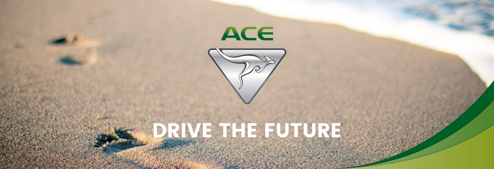 ACE Electric Vehicles - Drive The Future